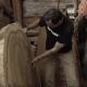 Cormark International Video