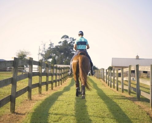 Julio Mendoza and His Horse