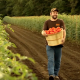 Ingles Markets Fresh Produce video